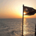 Smugglers fake ship identities to evade North Korea sanctions – research report