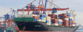 Today's global economy runs on standardized shipping containers, as the Ever Given fiasco illustrates